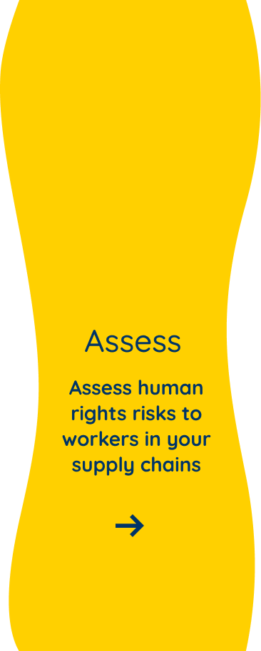 Assess human rights risks to workers in your supply chains